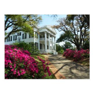 Stanton Hall - Spring in Natchez, Mississippi Postcard