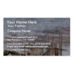 Stanza Della Signatura In The Vatican For Pope Jul Double-Sided Standard Business Cards (Pack Of 100)