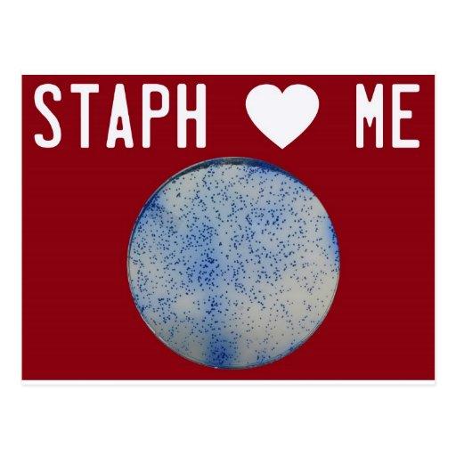Staph Love Me red Postcard