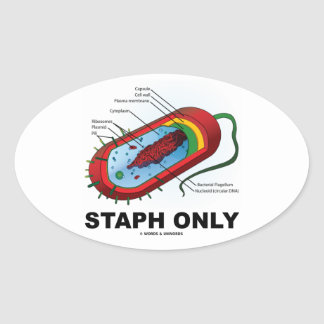 Staph Only (Bacterium Diagram Prokaryote Bacteria) Oval Sticker