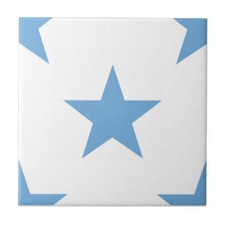 Star 1 Placid Blue Tile