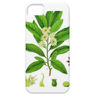 Star Anise iPhone SE/5/5s Case