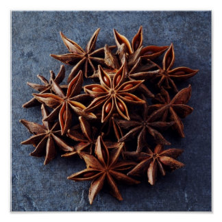 Star Anise Poster