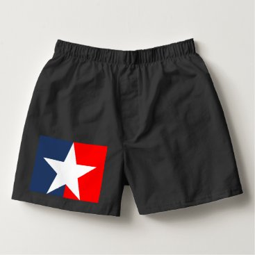 USA Themed Star Boxers