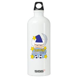Star Bright Dreams Tonight SIGG Traveler 1.0L Water Bottle