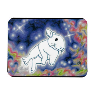 Star Bunny by Carrie Michael Rectangular Photo Magnet
