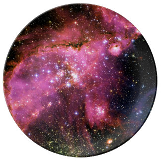 STAR CLUSTER NGC-346 (outer space) ~ Dinner Plate