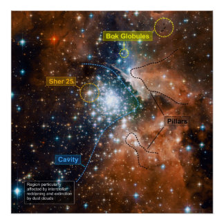 Star Cluster NGC 3603 with Annotations Poster