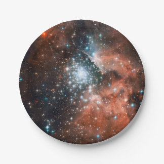 Star Cluster Paper Plate
