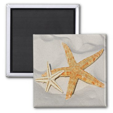 Beach Themed Star Fish at the Beach Magnet
