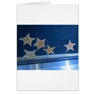 Star Fish Card