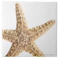 Star fish ceramic tile