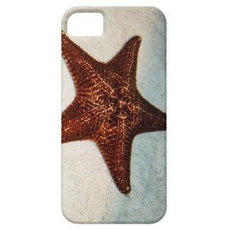 Star Fish iPhone 5 Cases