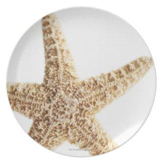 Star fish melamine plate