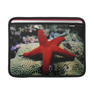 Star Fish | Red Sea Sleeves For MacBook Air