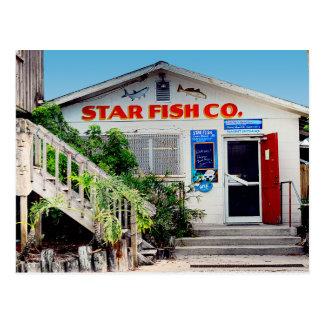 Star Fish Seafood Company Market Postcard