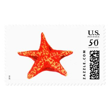 Beach Themed Star Fish Watercolor Stamps