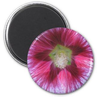 Star Flower Magnet
