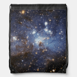 Star-Forming Region LH 95 in the Large Magellanic Drawstring Backpack