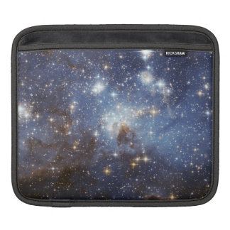 Star-Forming Region LH 95 in the Large Magellanic Sleeve For iPads