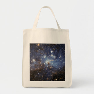 Star-Forming Region LH 95 in the Large Magellanic Tote Bag