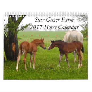 Star Gazer Farm 2017 Horse Calendar