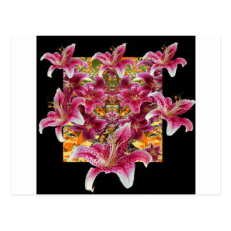 star gazer lilies floral art postcard