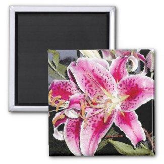 Star Gazer Lily Art Magnet magnet