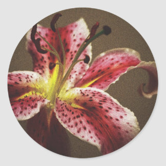 Star Gazer Lily Classic Round Sticker