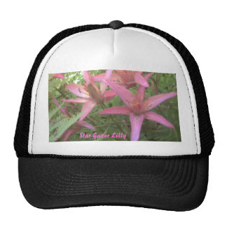 Star gazer lilys close up, Star Gazer Lilly Hats