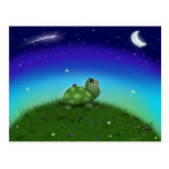 Star Gazing Turtle Postcards