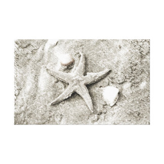Star in the Sand Canvas Print