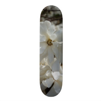 Star Magnolia Blooms Skateboard Deck