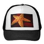 Star Mesh Hats
