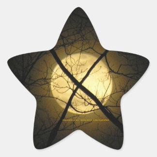 Star & Moon Sticker