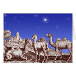 Star of Bethlehem Camels Cards