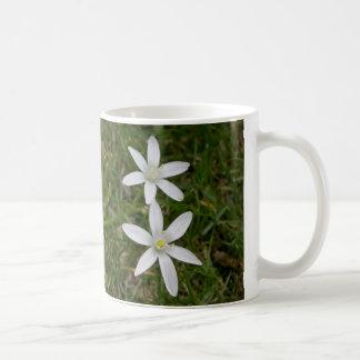 Star of Bethlehem flower mug