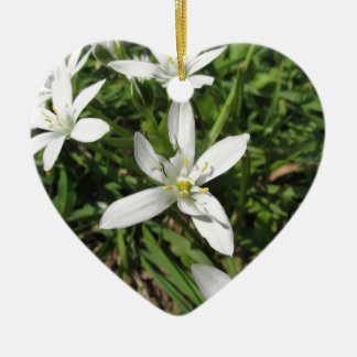 Star of Bethlehem flowers and daisies Ceramic Ornament