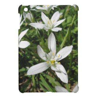 Star of Bethlehem flowers and daisies iPad Mini Case