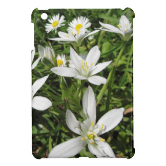 Star of Bethlehem flowers and daisies iPad Mini Cases