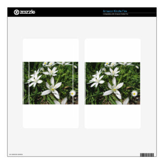 Star of Bethlehem flowers and daisies Kindle Fire Decals