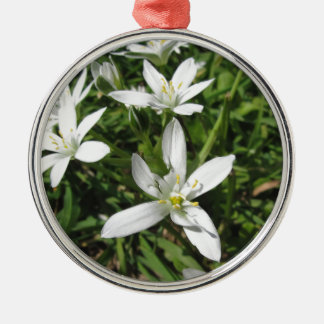 Star of Bethlehem flowers and daisies Metal Ornament