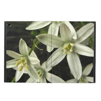 Star of Bethlehem iPad Air iPad Air Case