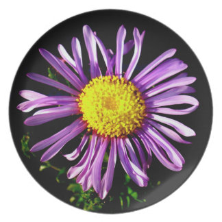 Star of Love and Fidelity Dinner Plate