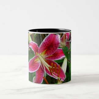 Star of the Garden by Nature Bug Two-Tone Coffee Mug