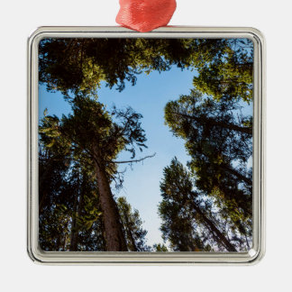 Star Of The Pine Tree Forest Metal Ornament