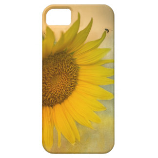 """""""Star of the Show"""" iPhone 5 Covers"""
