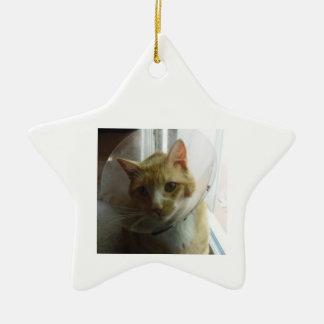 Star Ornament Cat in Cone