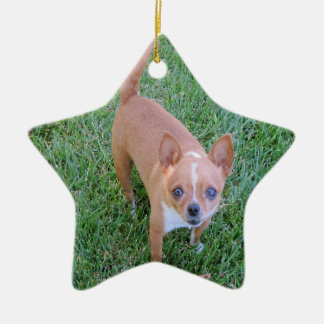 Star Ornament: Chihuahua -- or Your Pet Ceramic Ornament