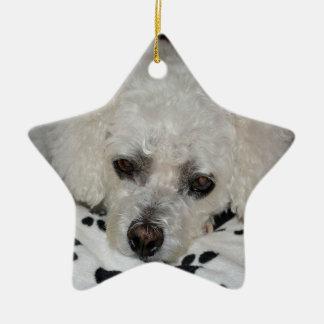 Star Ornament White Dog